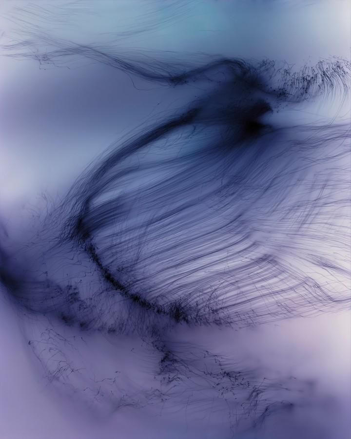 W.T. Freisswimer, 2011. Stampa digitale, 224 x 181 cm. Courtesy Galería Juana de Aizpuru, Madrid; Chantal Crousel, Parigi; Regen Projects, Los Angeles; Daniel Buchholz, Berlino.